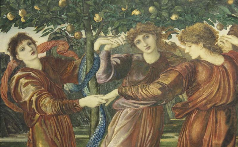 The golden apples of the Hesperides by Edward Burne-Jones.