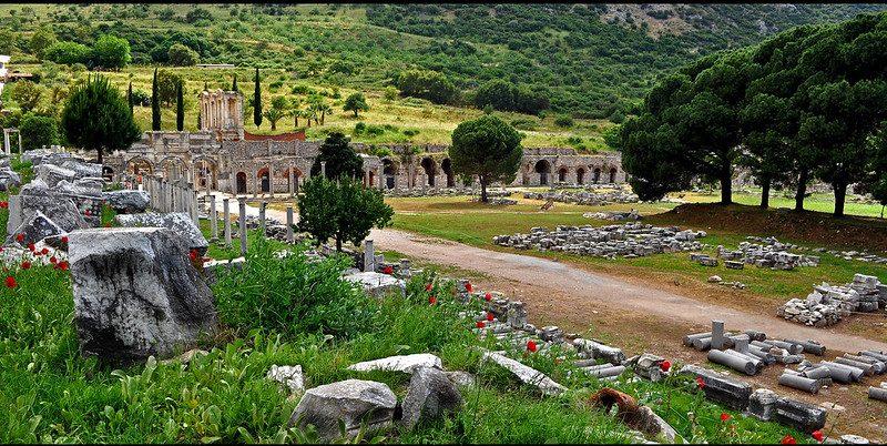 A Mythological Garden in Odyssey